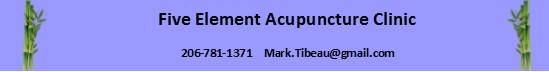 Mark Tibeau, Licensed Acupuncturist - 5 Element Acupuncture in Seattle, Washington